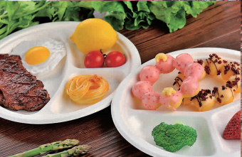 biodegradable lunch box china