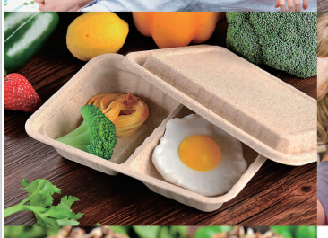 biodegradable lunch box sugarcane
