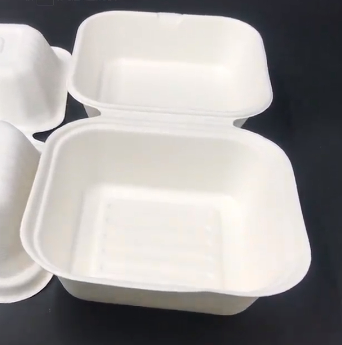 biodegradable food containers manufacturer