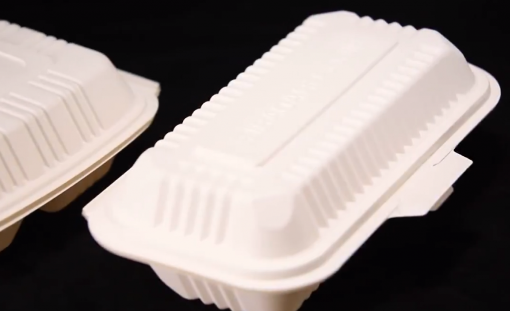 eco friendly disposable lunch boxes